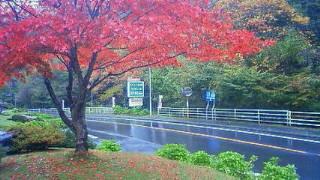 image/2011-10-30T19:07:37-3.jpg
